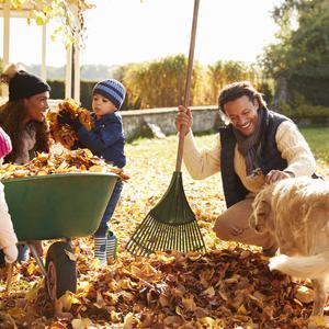 Jesień w ogrodzie - jak spędzić ciekawie czas z dzieckiem na powietrzu?